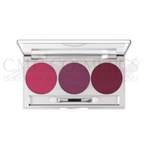 KRYOLAN  EYE SHADOW SMOKEY COLLECTION - PALETA CIENI DO POWIEK NIGHT DREAM